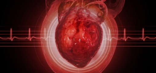 Service evaluation to establish value of a novel online cardiac rehabilitation programme specifically for chronic heart failure